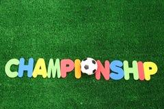 Championship ball Royalty Free Stock Photos