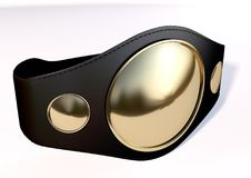 3D championship belt Royalty Free Stock Image