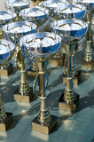 Championship cups Stock Image