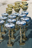 Championship cups Stock Images