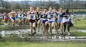 Championship high school cross country racin in the mud Royalty Free Stock Photo