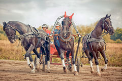 Free Championship Of Russia Russian Troika Royalty Free Stock Images - 55249409