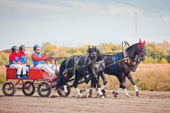 Championship of Russia Russian Troika Stock Images