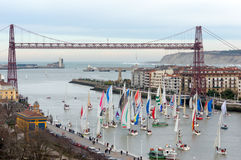Championship of sailboats Royalty Free Stock Photo