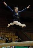 Championship on sporting gymnastics Royalty Free Stock Photos