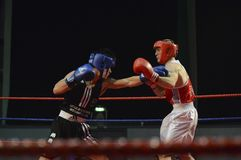 Championships. Boxing sport fight endurance box royalty free stock image