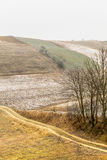 Champs accidentés givrés de vue de campagne avec des arbres Image stock