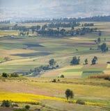 Champs colorés dans les montagnes de l'Ethiopie Image libre de droits