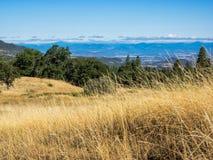 Champs d'herbe sèche avec la vallée et les montagnes dans la distance Photos libres de droits