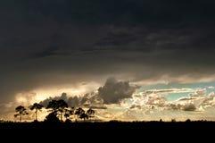 Champs d'un orage au-dessus des marais photo libre de droits
