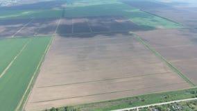 Champs dans la vue de Kuban d'une taille Jeune blé et champ labouré un peu plus loin du village Photo stock