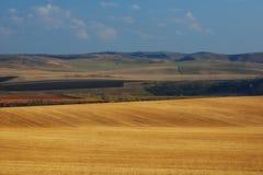 Champs de blé dans les montagnes Image libre de droits