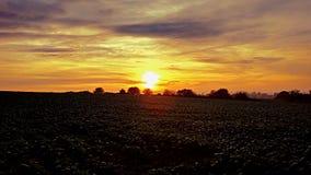Champs de coucher du soleil Photographie stock