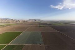 Champs de ferme de la Californie aériens Photographie stock libre de droits