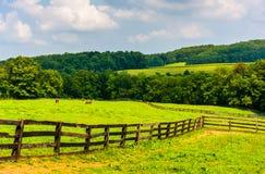 Champs de ferme et Rolling Hills dans le comté de York rural, Pennsylvanie photographie stock