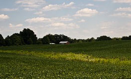 Champs de grange Photos libres de droits