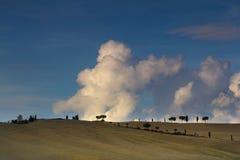 Champs de la Toscane en automne Images libres de droits