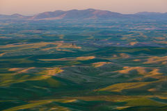 Champs de Palouse Photographie stock