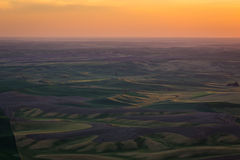 Champs de Palouse Image stock