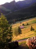 Champs de Tatra Image stock