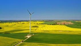 Champs de viol et turbine de vent verts au printemps, la Pologne banque de vidéos