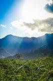 Champs et collines de Bali Image libre de droits