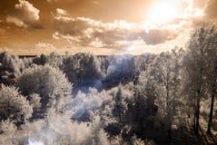 champs et forêts de campagne Image infrarouge Photos stock