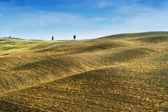 Champs et paix dans le soleil chaud de la Toscane, Italie Photo stock