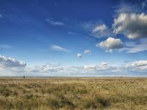 Champs jaunes sous un ciel bleu dramatique avec les nuages blancs voisins la colonie du grec ancien de Histria, sur les rivages d Image stock