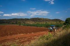 Champs rouges de sol et de manioc en Thaïlande avec des montagnes au CCB Photo stock