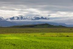 Champs verts dans la vallée en Islande Photographie stock libre de droits