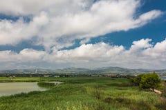 Champs verts dans le del l'Èbre de delta Image stock