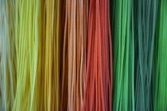 Chamude coloré Image stock