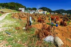 公墓,圣胡安Chamula,墨西哥 免版税图库摄影