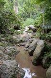 Chan ta then forest. At Bang Phra, Sriracha, Chonburi, Thailand royalty free stock images