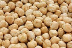 Chana, chickpea, garbanzo bean Stock Images