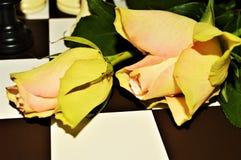 Chance dans l'amour Photographie stock libre de droits
