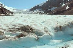 Chanceux pour éprouver le glacier photographie stock
