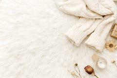 Chandail chaud et fleurs sèches au fond blanc photographie stock libre de droits