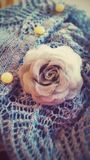 Chandail de Madame et broche rose Image stock