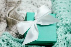 Chandails colorés en pastel tricotés élégants avec la boîte actuelle colorée par menthe avec l'arc blanc de satin Hiver et printe photos stock