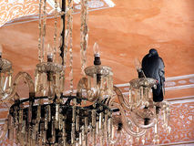 Chandelier. Crystal chandelier at the City Palace Museum, Jaipur Stock Photography
