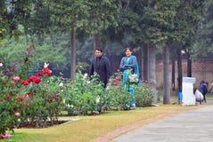 Chandigarh, India - Januari 4, 2015: De Indische mensen bezoeken Zakir Hussain Rose Garden in Chandigarh Stock Foto