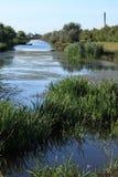 Chanel nel delta del Danubio Fotografia Stock