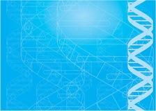 Chaînes de caractères d'ADN Photo libre de droits
