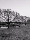 Chang Hu Lake @ Kunming, Yunnan, Chine Photographie stock