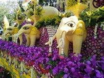 Chang mai kwitnie festiwal Obraz Royalty Free