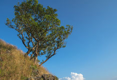 Chang Puek Mountain Karnchanaburi Thailand Stock Image