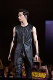 Chang Sung (musikband 2PM) på den EquilibriumConcert Korea för mänsklig kultur festivalen i Vietnam Royaltyfri Bild