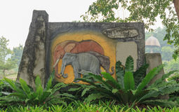 Chang took the city of Songkhla Zoo. Chang is a large mammal in the family Elephantidae by two separate currencies including elephant Elephas and Loxodonta in Stock Photography
